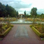 Phone Photos: Fountain