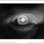 Self Portraits - Negative Side